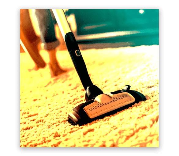 Professional Carpet Cleaning Highbury